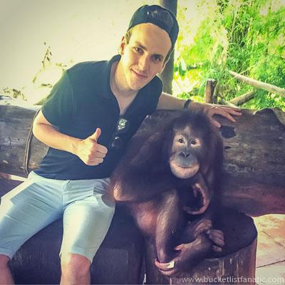 Orangutang - Bucket List
