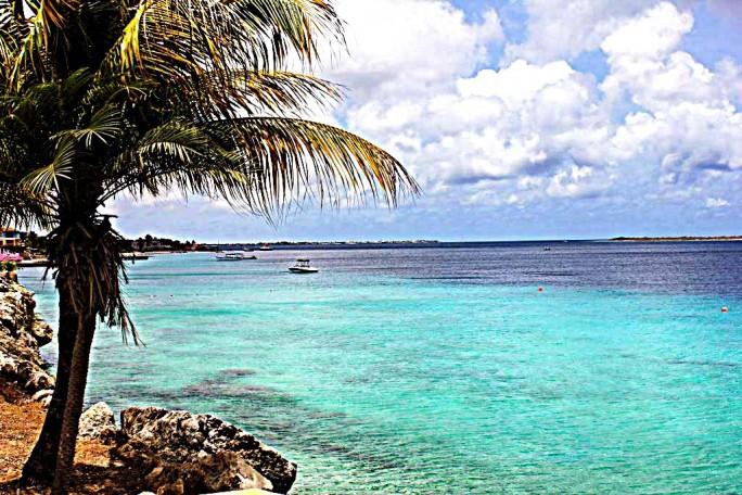 Buddy Dive Resort View, Bonaire