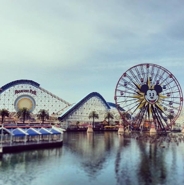 Mickey's Wheel