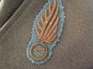 Badge of the Norton-Harjes ambulance unit.