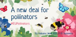 Die EU-Bestäuberwoche vom 27. bis 30. September 2021