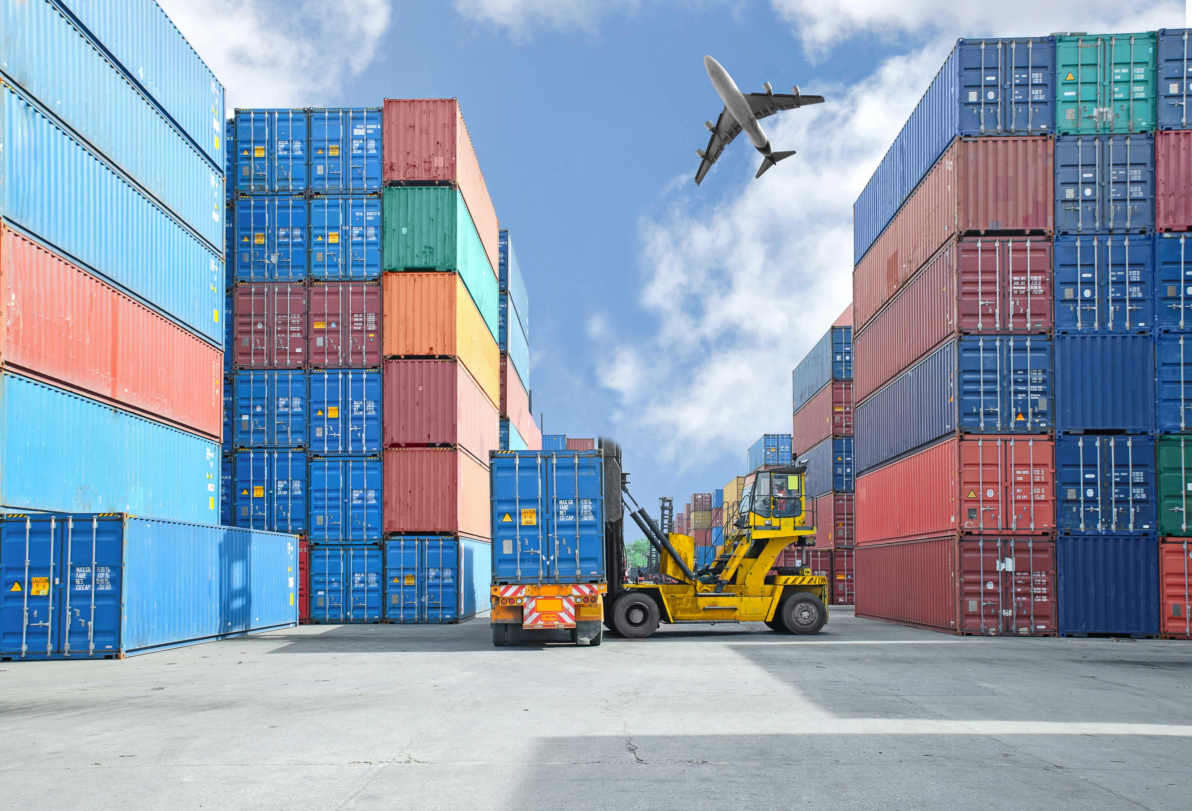 Freight Forwarding Logistics  Buckland