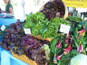Blooming Glen Farm at Wrightstown Farmers Market