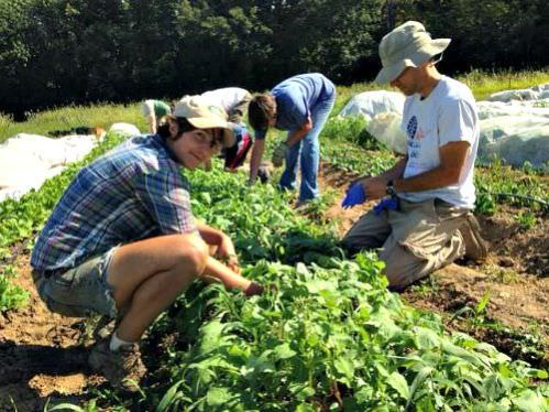 Gleaners_Volunteer Labor Day_Sept 7 2015