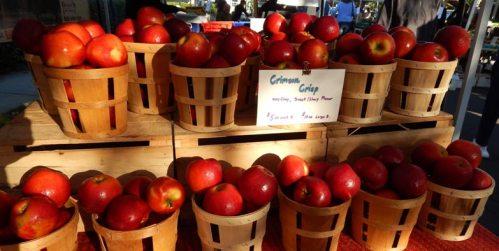 Crimson Crisp Apples, Doylestown Farmer's Market