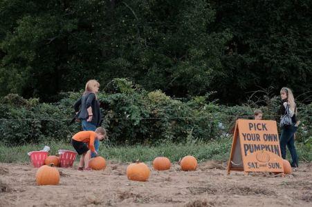 Oktoberfest, Snipes Farm
