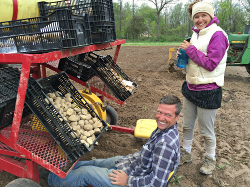 Potato planting_Roots to River Farm; photo credit Lynne Goldman