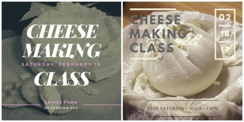 Snipes Farm cheese making class