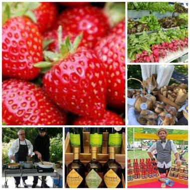 Farmers markets in bucks county