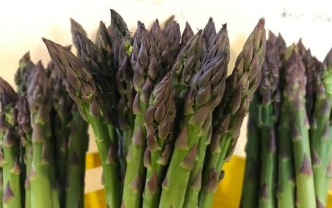 Asparagus from Wrightstown Farmers Market