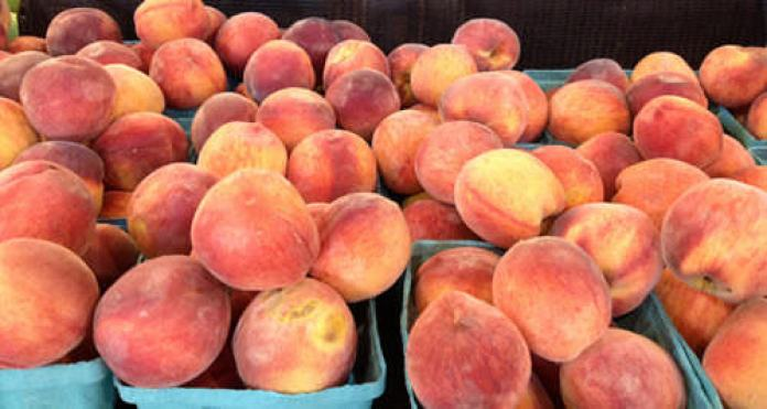 Shady Brook Farm peaches