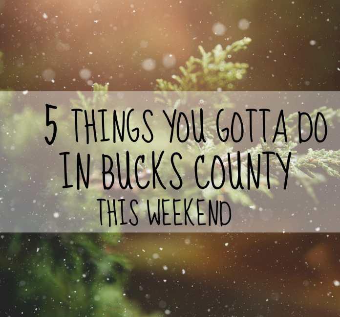 5 THINGS YOU GOTTA DO