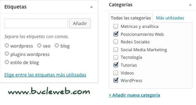 categori-y-etiquetas-bucle-marketing-online