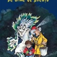 Vânătorii de fantome – pe urme de gheață, o carte aventuroasă pentru curajoșii de 7-9 ani