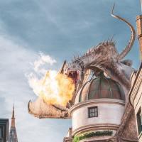 8 cărți pe care să le citești dacă ți-a plăcut Harry Potter