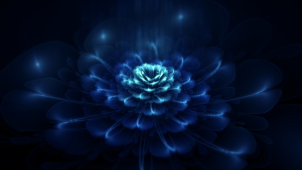 Dark-Flower-Wallpaper