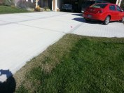 New grass emerging in one week after the project was finished.