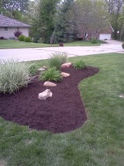 New berm with plantings.