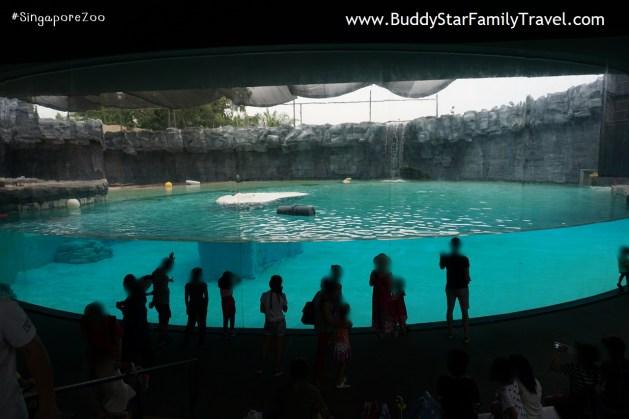 สวนสัตว์สิงคโปร์, เด็ก, ที่เที่ยว, พาลูกเที่ยว, สิงคโปร์, singapore zoo