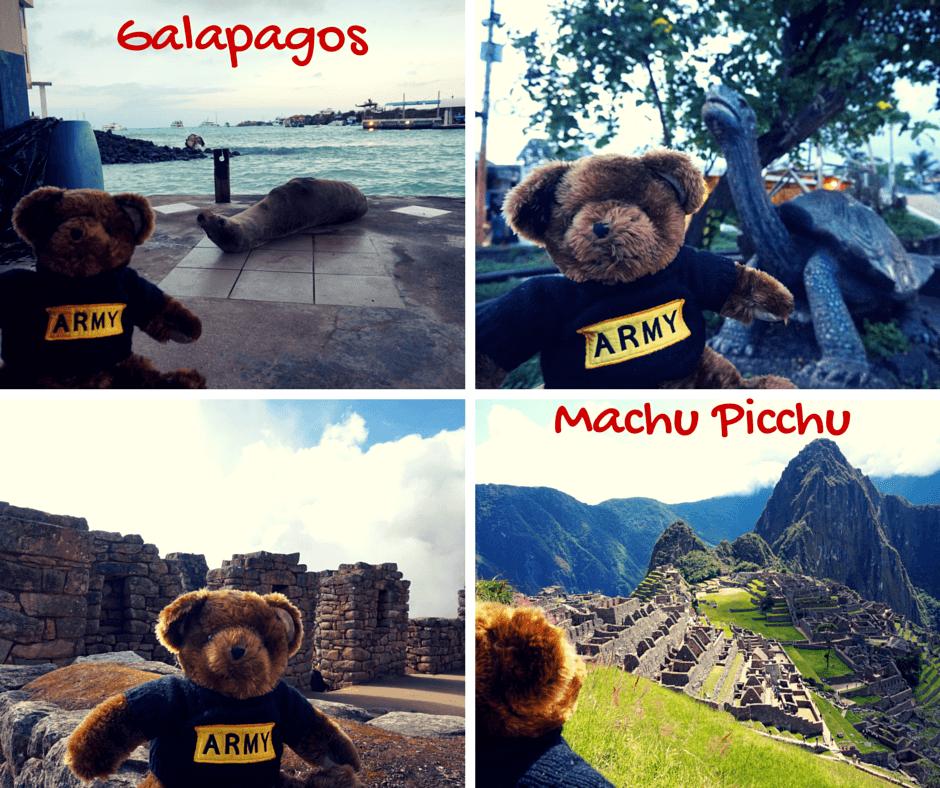 Buddy The Traveling Monkey Buddy's Buddies