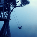 Swinging At The End Of The World