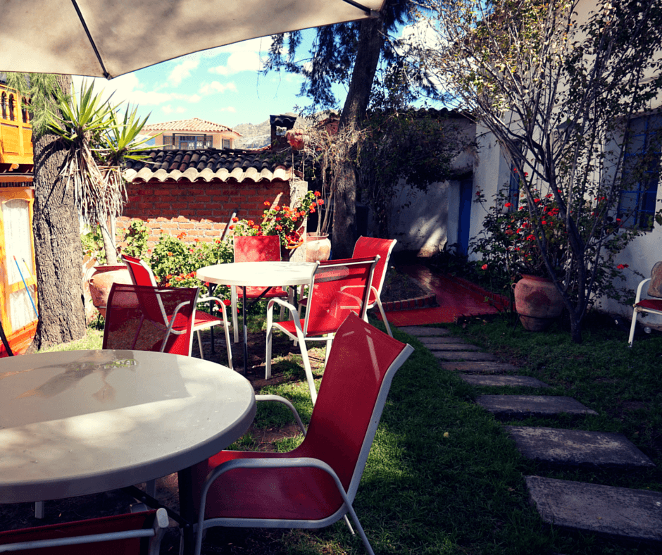 Buddy The Traveling Monkey Thomas Grill Garden Hostel Review