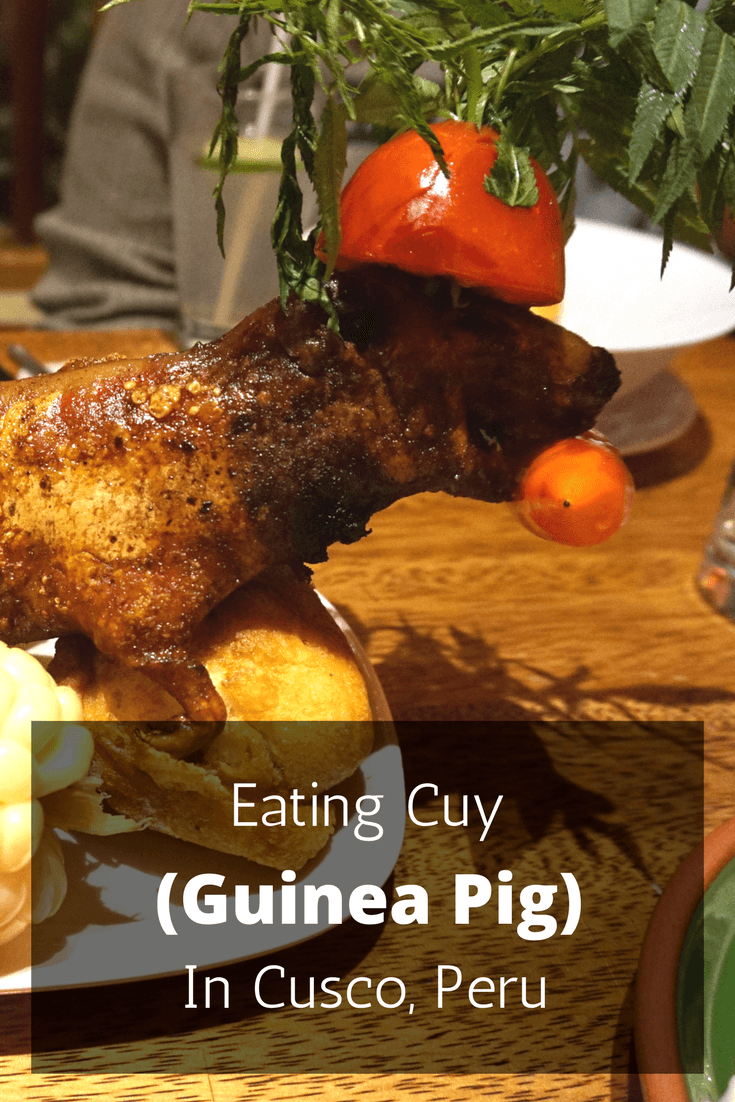 Eating cuy (guinea pig) is something every visitor to Peru should do. If you're wondering where to eat cuy in Cusco, we found the perfect restaurant!