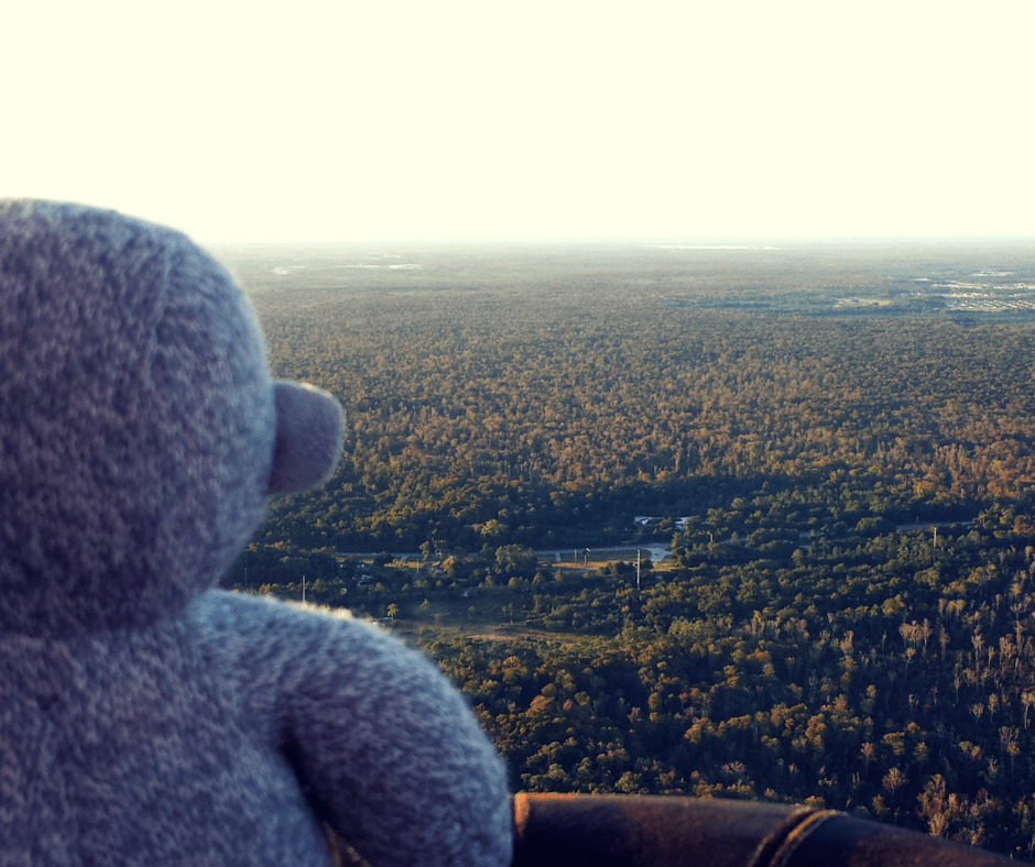 Buddy The Traveling Monkey Hot Air Balloon Ride Central Florida