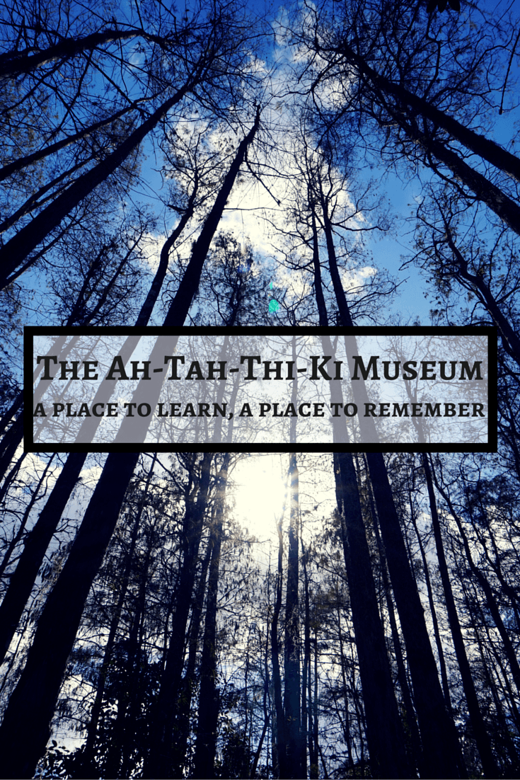 Florida is rich in Native American culture and history, and there's no better place to learn about the Seminole Indian tribe than the Ah Tah Thi Ki Museum.