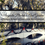 Magnolia Plantation And Gardens: A Tranquil Retreat in Charleston, South Carolina