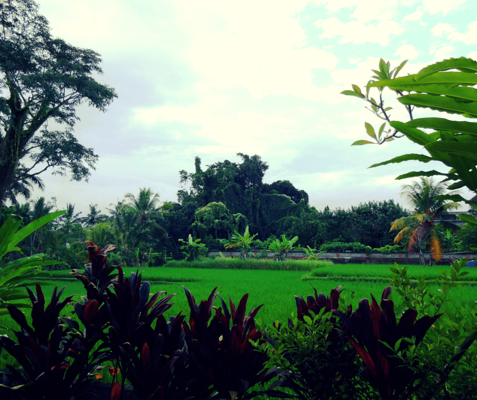 Aniniraka Resort & Spa, Ubud