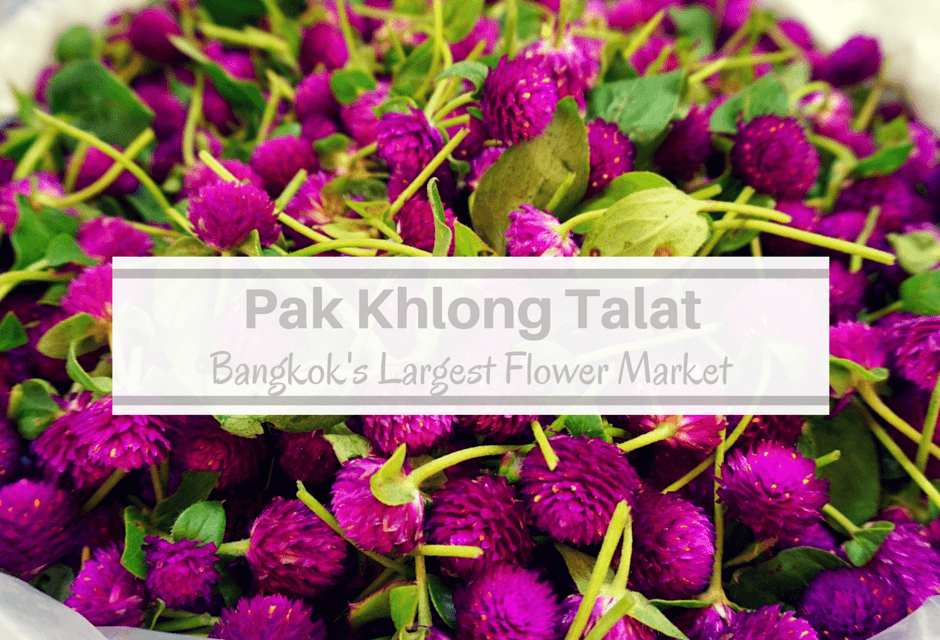 Pak Khlong Talat: The Largest Bangkok Flower Market