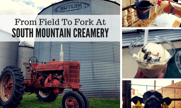 From Field To Fork At South Mountain Creamery