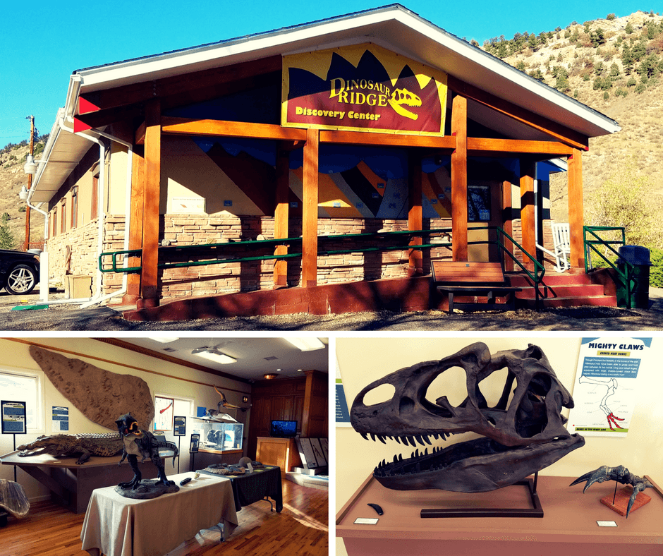 Inside the visitor center of Dinosaur Ridge Colorado