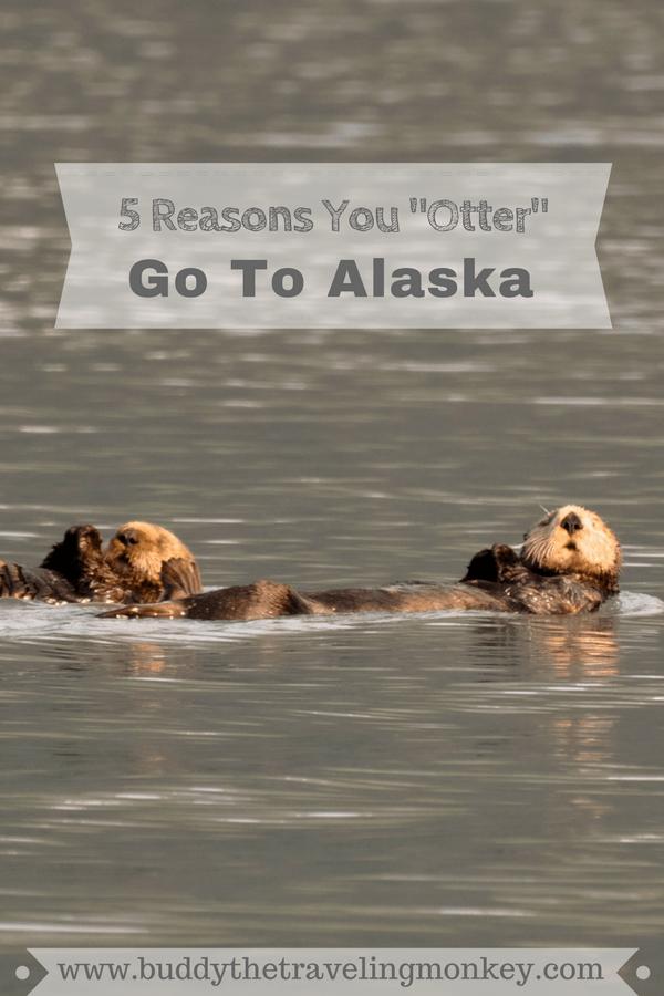Pinterest pin for Reasons To Visit Alaska