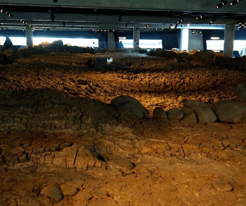 inside The Settlement Exhibition