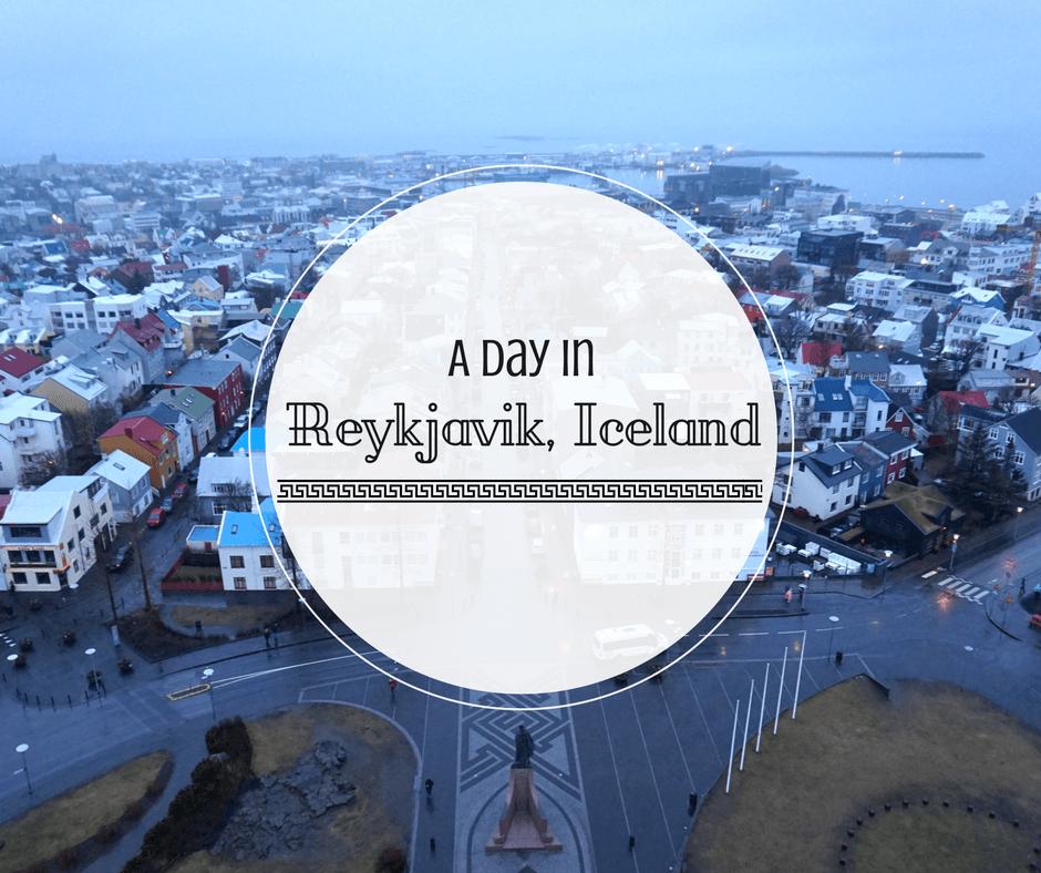 A Day In Reykjavik, Iceland | Buddy The Traveling Monkey