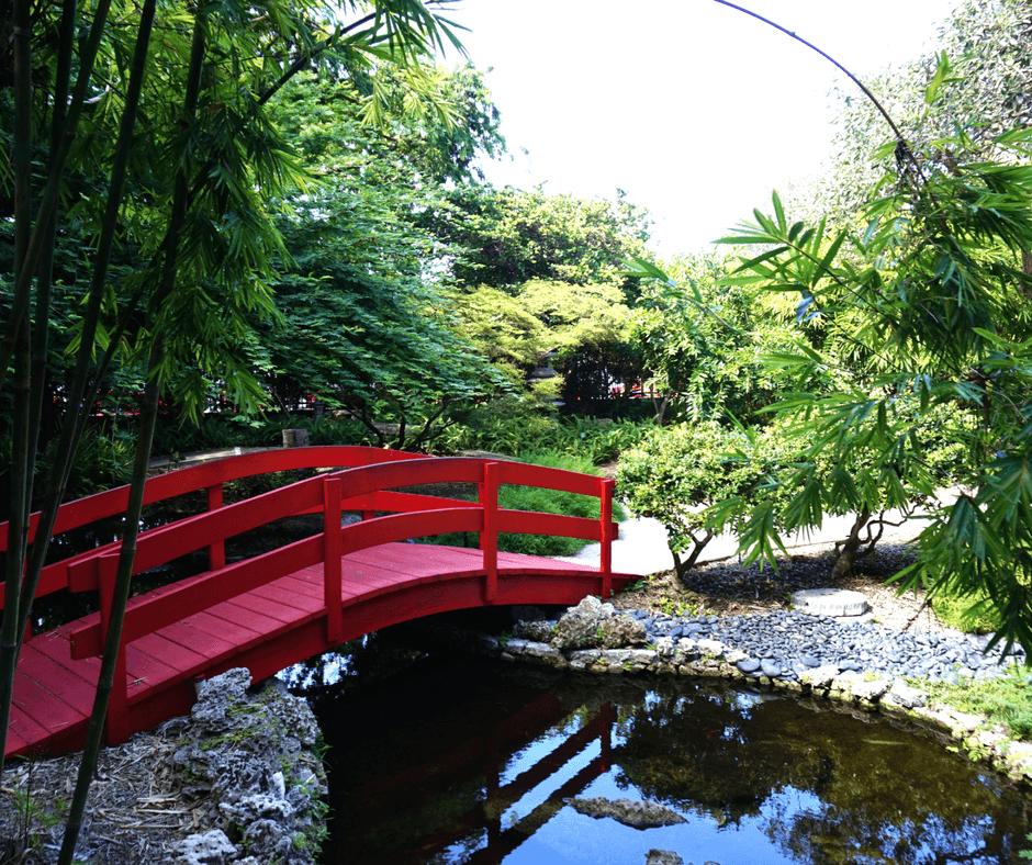 Japanese Garden at the Miami Beach Botanical Garden