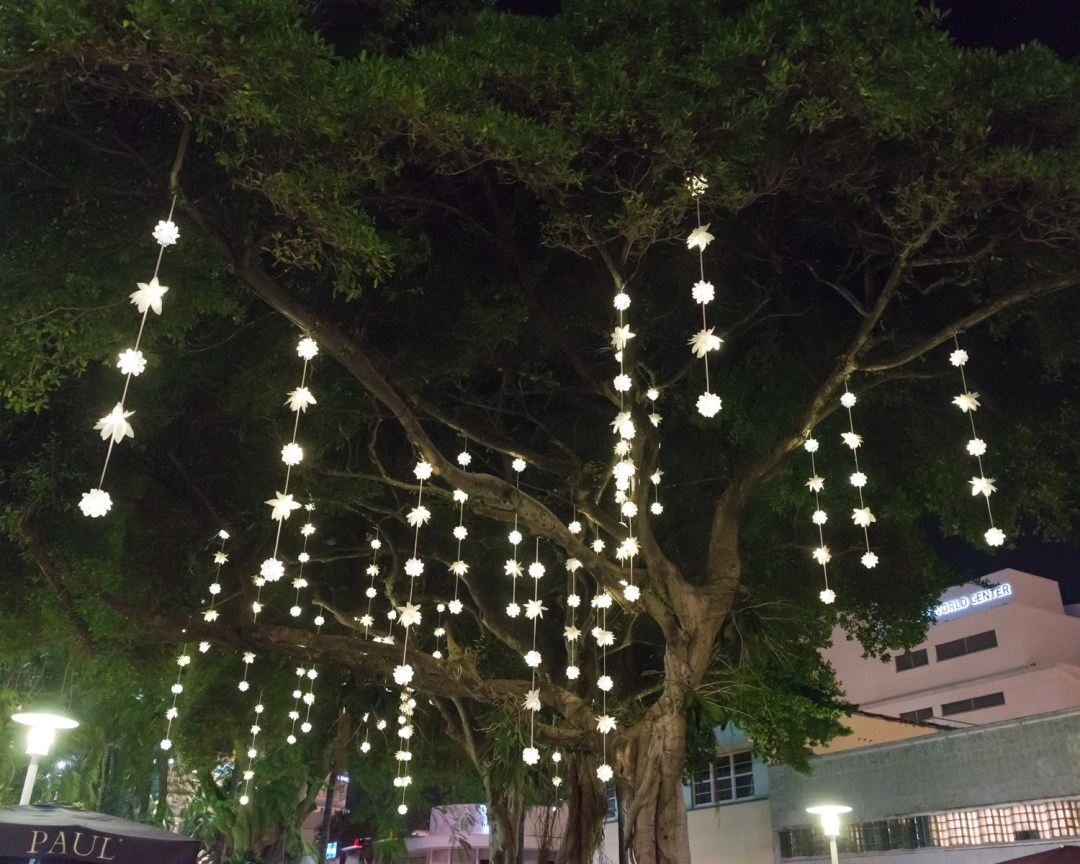 Lights on tree on Lincoln Road in Miami Beach