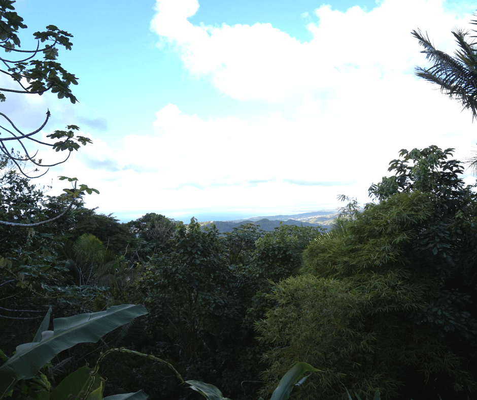 view of el yunque