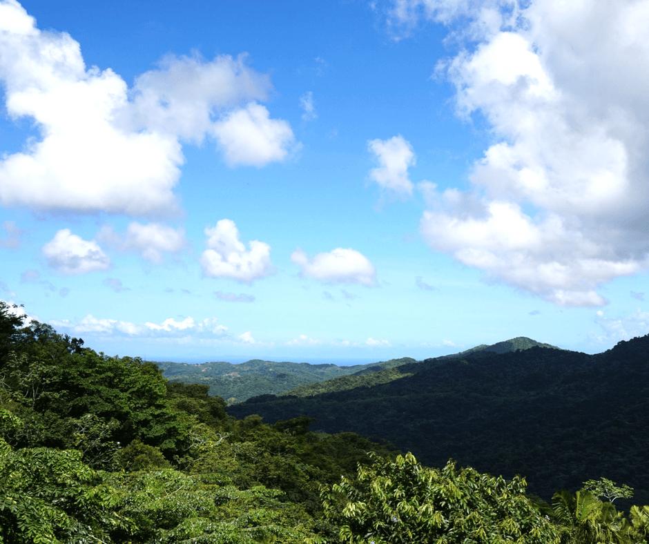 View of El Yunque