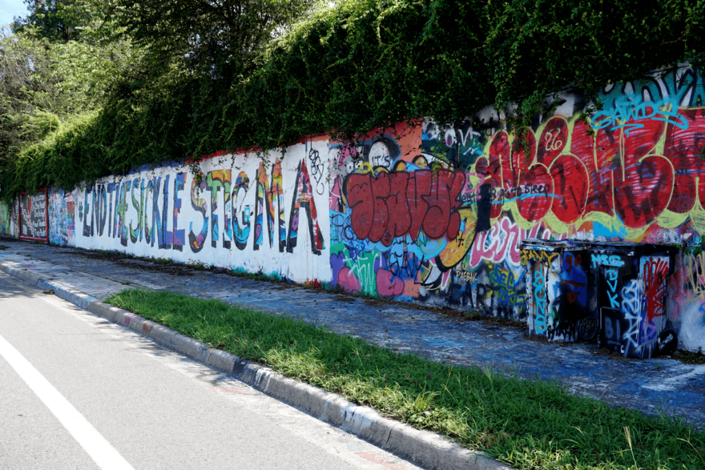 34th Street Wall in Gainesville
