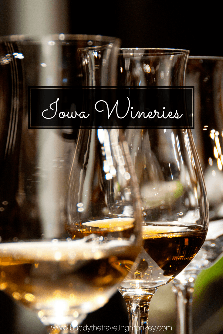 Iowa wineries are sure to surprise and delight you! There are over 100 wineries in Iowa, with everything from exotic fruit wines to traditional grape wines. No matter what city you're in, you'll be sure to find one nearby! Click this post to learn more about these delicious Iowa wineries.