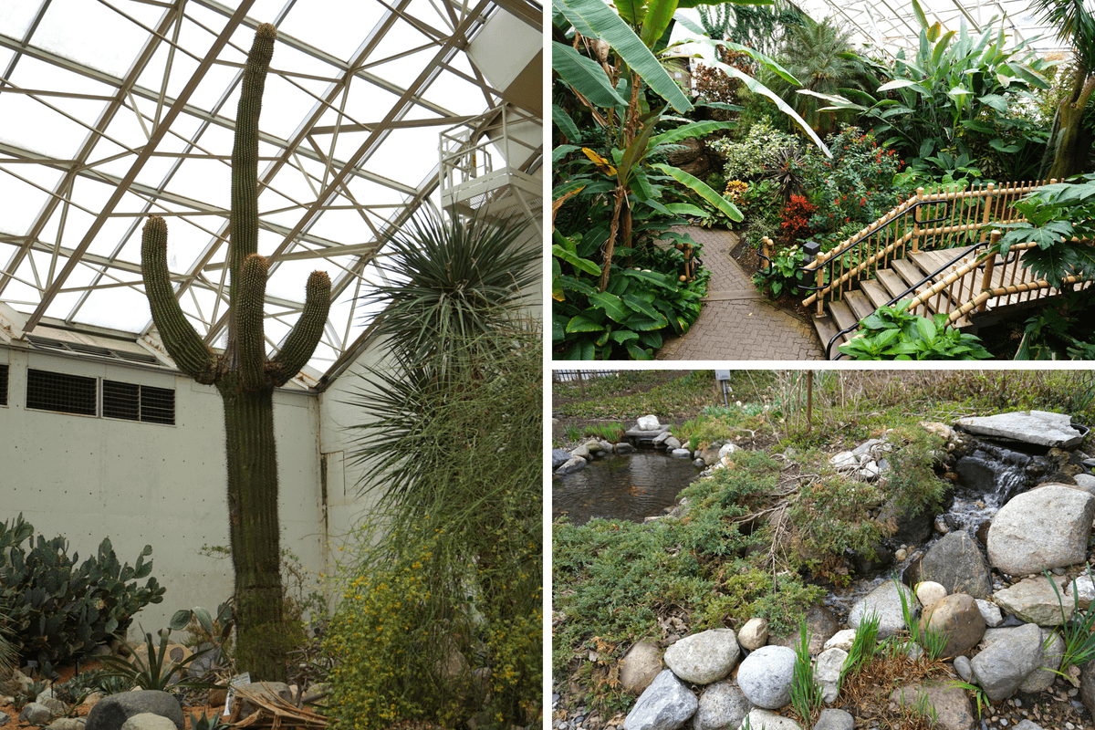 Many Different Gardens, Including Desert And Tropical!