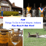 Fun Things To Do In Fort Wayne – For Adults And Kids!