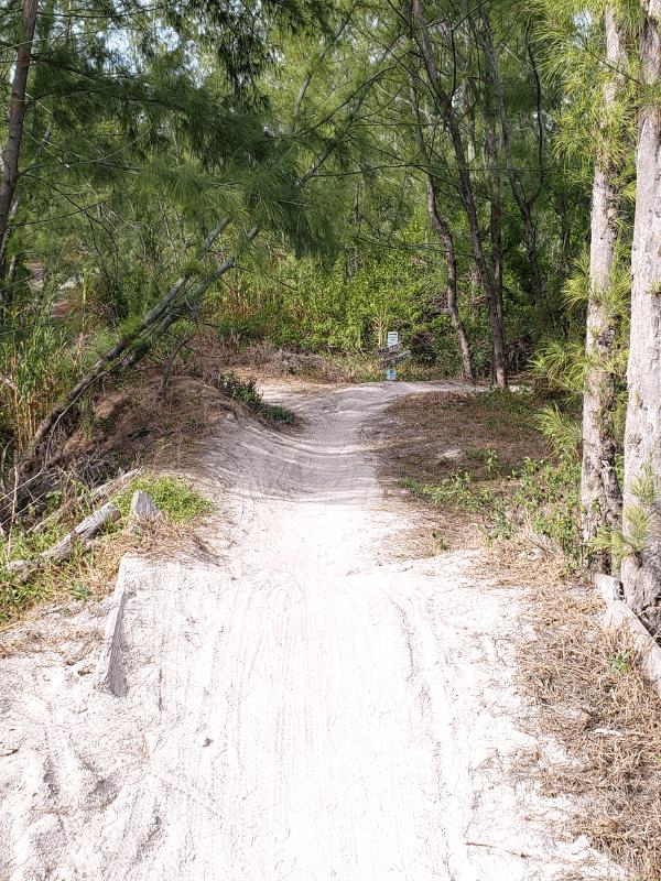 Mountain biking in Miami