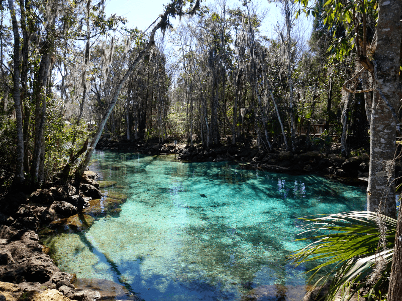 Crystal River National Wildlife Refuge has some of the best hiking trails in Florida