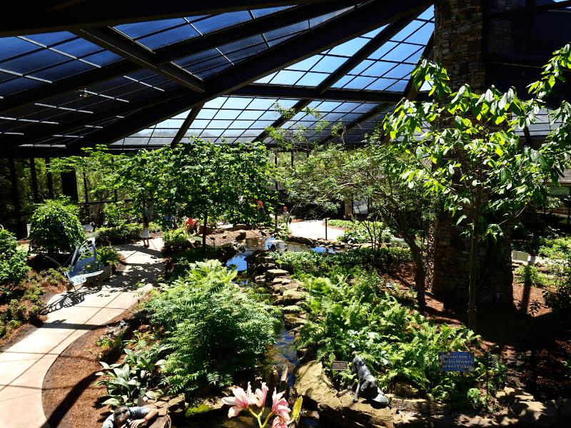 Inside the butterfly house at the Huntsville Botanical Garden