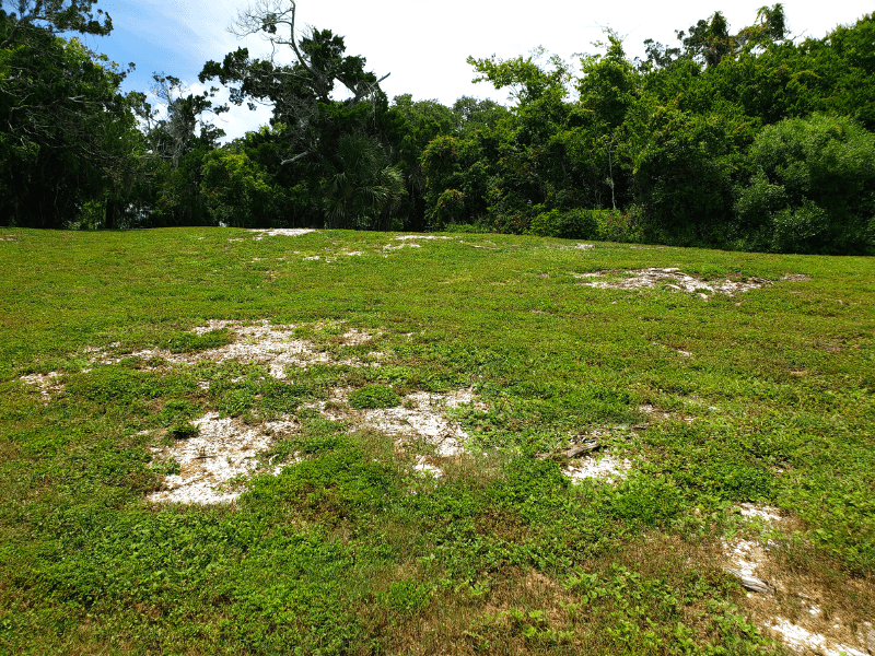 Shells can still be seen throughout the grounds at Seminole Rest