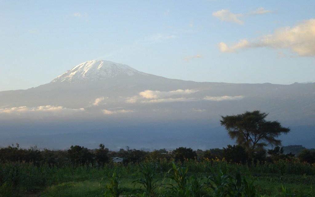 Lemosho Route 8 Day Kilimanjaro Climb, 2 Day  Hotel Stay